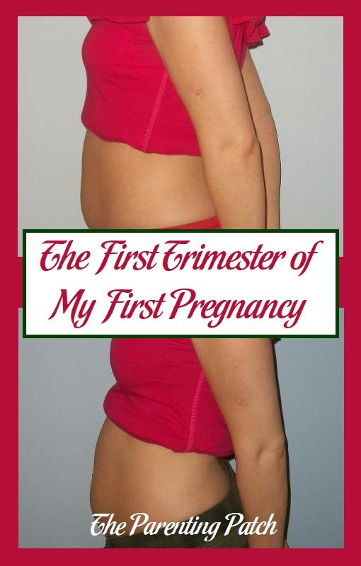 The First Trimester of My First Pregnancy