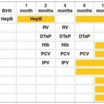 Recommended Vaccination Schedule from Birth to Two Years