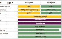 Recommended Vaccination Schedule from Eleven to Eighteen Years