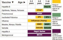 Recommended Vaccination Schedule from Two to Ten Years