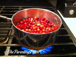 Boiling the Orange Cranberry Sauce