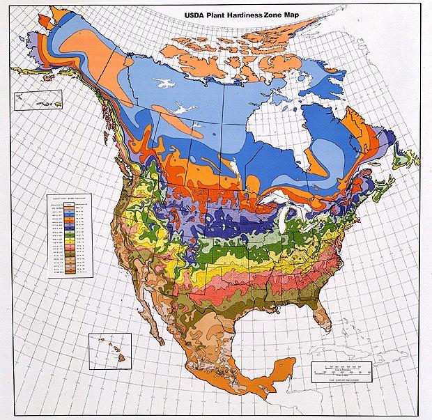 USDA Plant Hardiness Zone Map