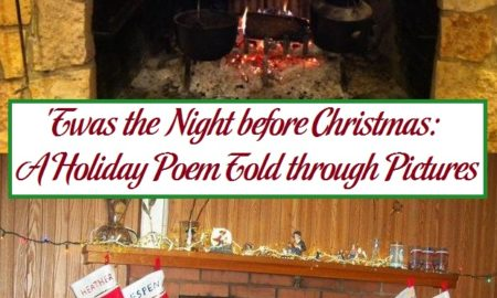 'Twas the Night before Christmas: A Holiday Poem Told through Pictures