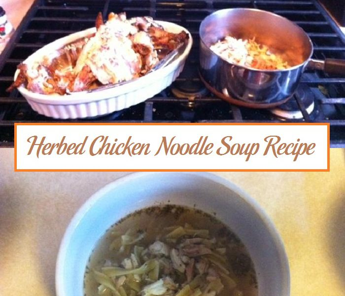 Herbed Chicken Noodle Soup Recipe | Parenting Patch