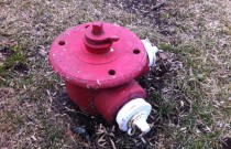 Fire Hydrants: A Wordless Wednesday Espentorial