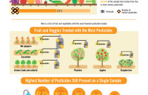 Fruits, Veggies, and Pesticides Infographic