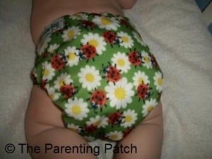 Back of Glow Bug Cloth Diaper