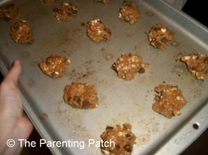Raw Lactation Cookies Cookie Dough