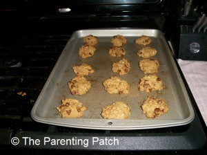Baked Lactation Cookies