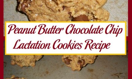 Peanut Butter Chocolate Chip Lactation Cookies Recipe