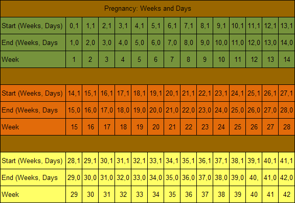 How Long Is Pregnancy: Days, Weeks, Months, Trimesters ...