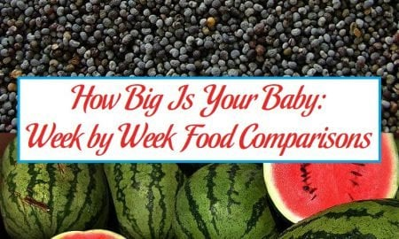 How Big Is Your Baby: Week by Week Food Comparisons