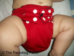 Snap 'n Wraps Hybrid Diaper 1