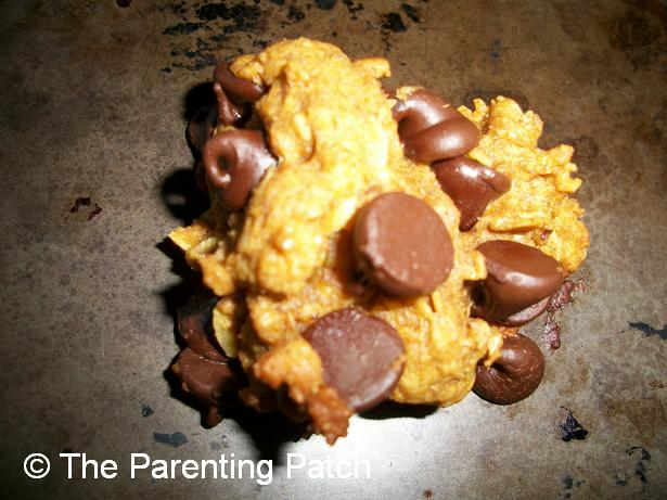 Peanut Butter Pumpkin Chocolate Chip Lactation Cookies