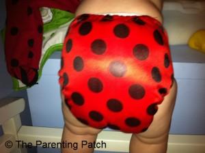 Ladybug Bamboo Alva Baby Cloth Diaper 10