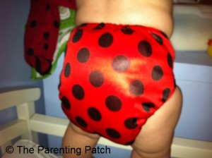 Ladybug Bamboo Alva Baby Cloth Diaper 11