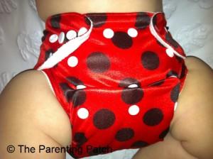 Ladybug Bamboo Alva Baby Cloth Diaper 3