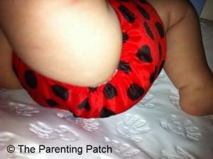 Ladybug Bamboo Alva Baby Cloth Diaper 5