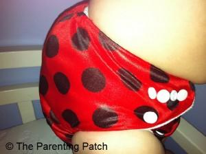 Ladybug Bamboo Alva Baby Cloth Diaper 6