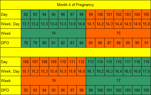 Month 4 of Pregnancy