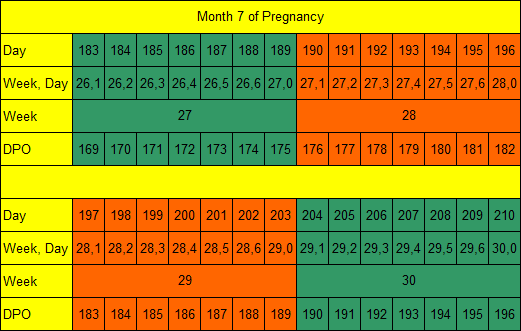 Month 7 of Pregnancy