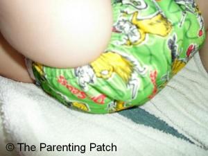 Green Eggs and Ham Bumkins Cloth Diaper 4