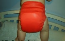 Sassy Flip: Daily Diaper