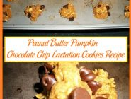Peanut Butter Pumpkin Chocolate Chip Lactation Cookies Recipe