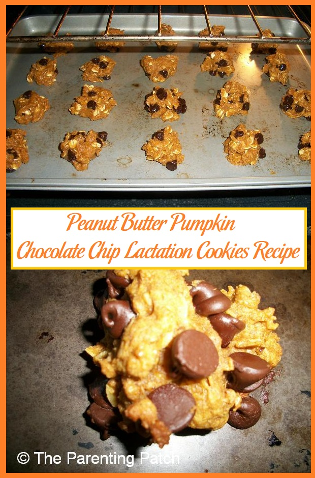 Peanut Butter Pumpkin Chocolate Chip Lactation Cookies Recipe