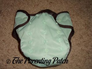 Mint Chocolate Chip Best Bottom Diapers 1