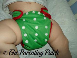 Mistletoe Best Bottom Diapers 3