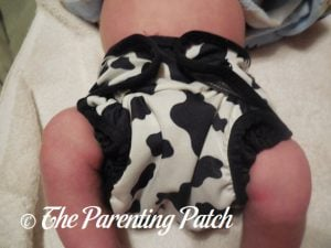 Moo-licious Best Bottom Diapers 2