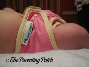 Strawberry Shortcake Best Bottom Diapers 4