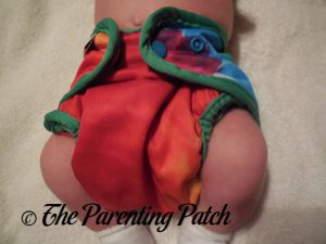 Totally Tie Dye Best Bottom Diapers 2