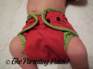 Watermelon Best Bottom Diapers 2