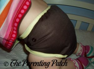 Chunky Monkey Best Bottom Diapers 3