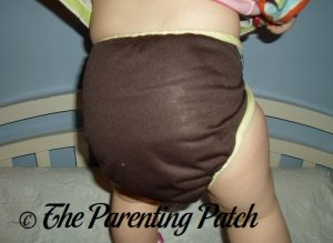 Chunky Monkey Best Bottom Diapers 4