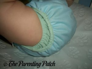 Blue Moon Best Bottom Diapers 3