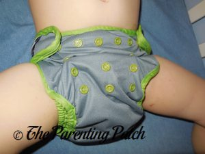 Dragonfly Ripple Best Bottom Diapers 3