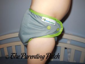 Dragonfly Ripple Best Bottom Diapers 4