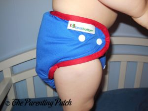 Freedom Best Bottom Diapers 4