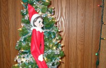The Elf on the Miniature Christmas Tree: The Elf on the Shelf Day 7