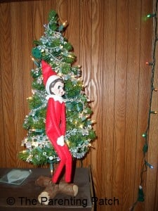 The Elf on the Miniature Christmas Tree