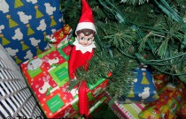 The Elf on the Christmas Gift: The Elf on the Shelf Day 11