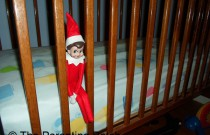 The Elf in the Crib: The Elf on the Shelf Day 12
