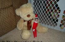 The Elf on the Teddy Bear: The Elf on the Shelf Day 24