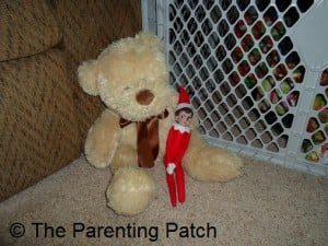 The Elf on the Teddy Bear