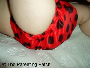 Ladybug WolbyBug Cloth Diaper 5