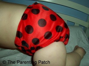Ladybug WolbyBug Cloth Diaper 7