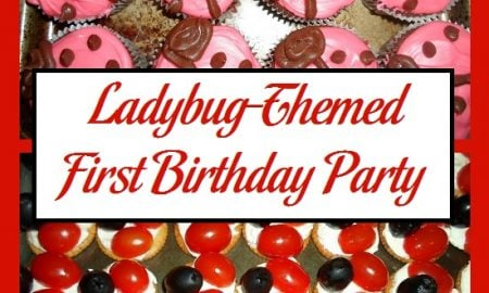 Ladybug-Themed First Birthday Party